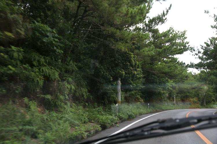 takae_011.jpg